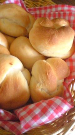 ドライイーストのパン開始